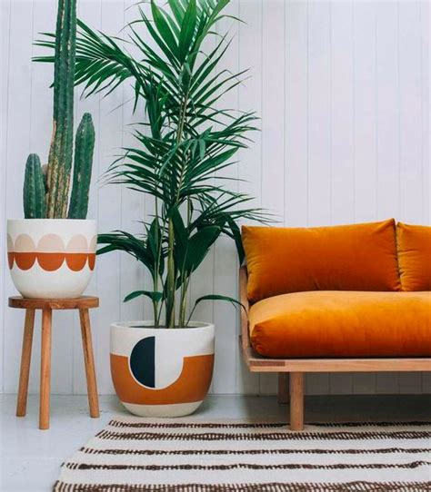 indoor house plants sale the 25 best 2017 interior trends ideas on pinterest