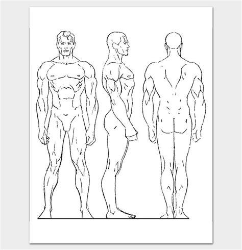 human back outline www pixshark com images galleries