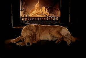 Fireplace Dogs by Winter S Nap Grate Fireplace Golder Qqay