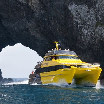 rock the boat tour nz explore group ltd charter boats tours and adventures