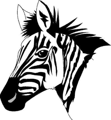 zebra face coloring page free zebra clipart