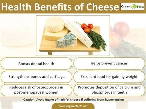 cottage cheese nutrients look at these health benefits of cheese cheese facts