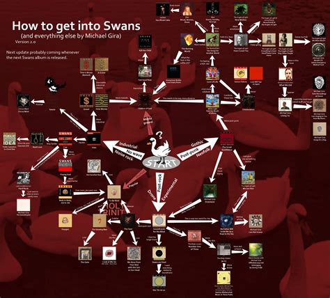how to get into swans