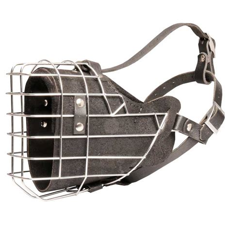 cage for rottweiler rottweiler harness rottweiler muzzle rottweiler collar bite sleeves leash
