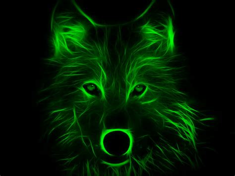 Gamis Wolvis Greeny image gallery neon wolves