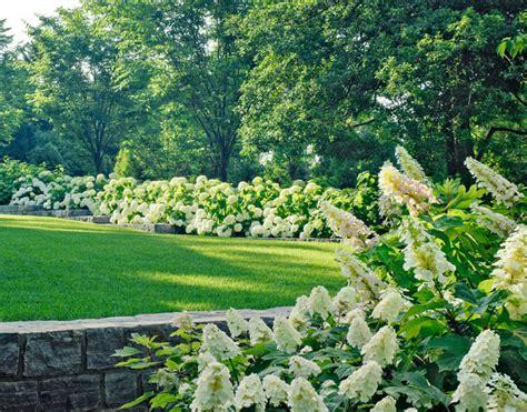 Garden Of Arlington by Arlington Residence Traditional Landscape Dc Metro By Katia Goffin Gardens
