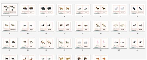montessori printable files montessori north american animals printable age 3 to 6