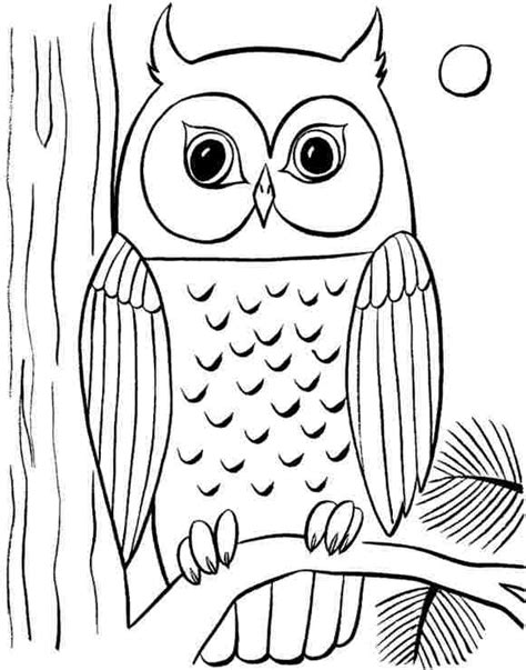 large printable owl body 25 best ideas about draw an owl on pinterest owl doodle
