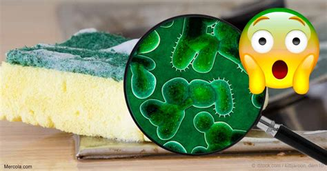 How To Clean A Smelly Kitchen Sponge by Just Dump Your Smelly Sponge