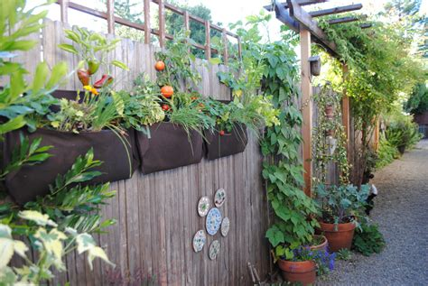 Vertical Gardening Plants Creative Vertical Gardening Ideas Bonnie Plants