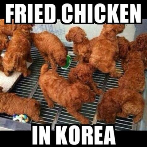 Fried Chicken Meme - funny black people fried chicken pictures to pin on