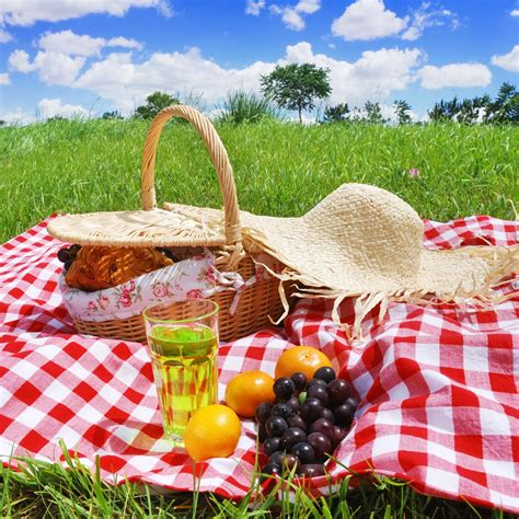 9 must have picnic accessories to improve your outdoor experience food wine
