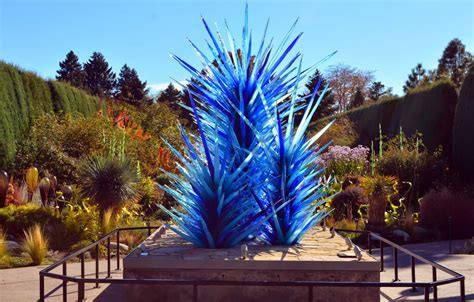 Mille Fiori Favoriti Chihuly Exhibit At The Denver Chihuly Exhibit Botanical Gardens