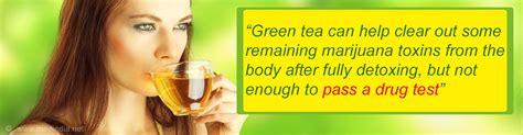 Will Detox Tea Help Pass A Test by Pass A Test With Green Tea Detox Pills Pass A