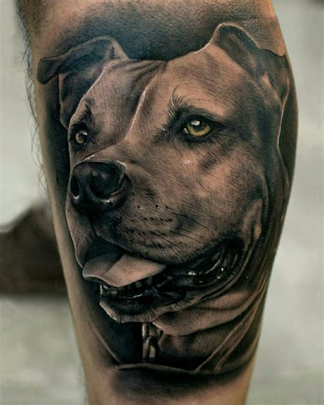 pitbull tattoo done by pablo hernandez bambamsi pitbull
