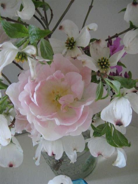 can you laminate flower petals pretty petals