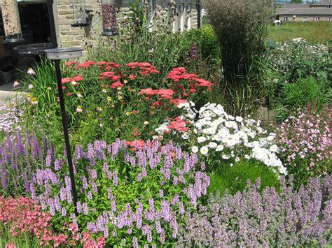 summer gardening gallery