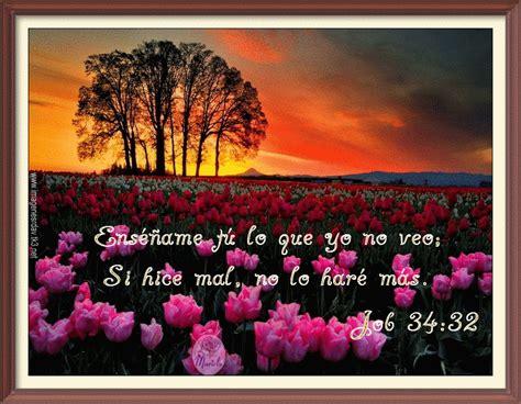 imagenes hermosas con textos biblicos im 225 genes cristianas im 225 genes con pasajes b 237 blicos