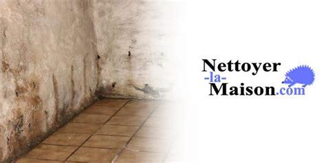 moisissure mur chambre lutter contre la moisissure et l humidit 233 nettoyer la