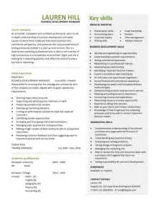Business Development Manager Sample Resume sample business development resumes jianbochen com