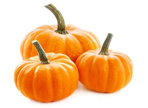 pumpkin of pumpkins produce made simple