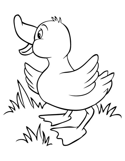 free duck drawing coloring pages