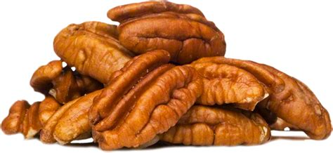 Home Design Youtube by New Aces Pecan Company Pecan Processing Packing And
