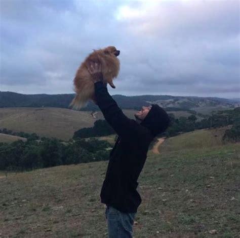 chico hängematte este chico australiano se ha propuesto salvar a todos los