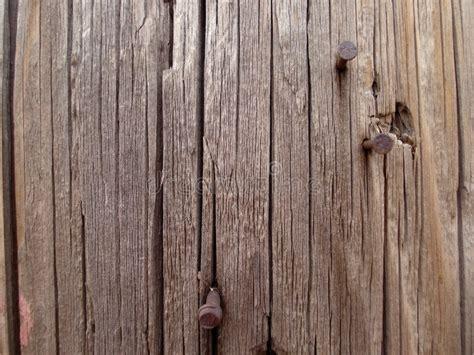 Wood Grain Nail