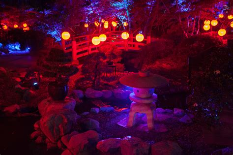 forest city lights enchanted forest of light descanso gardens things to