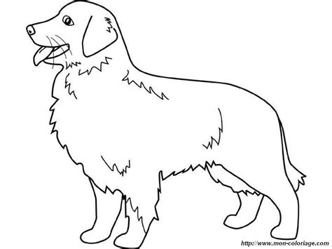 golden retriever coloring pages coloring dogs page golden retriever