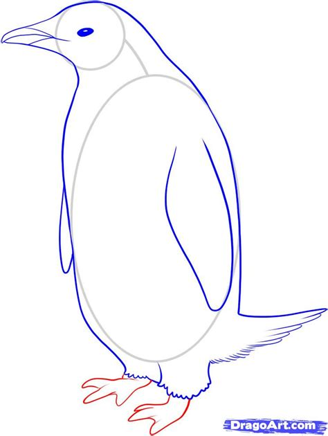 create drawings how to draw a penguin step by step birds animals free