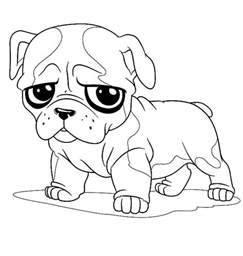 bulldog coloring pages concept design home bulldog drawing images