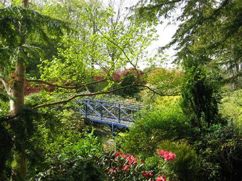Aberdeen Gardens johnston gardens