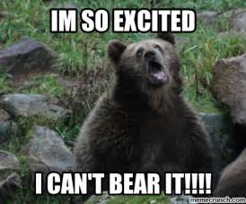 Bear Meme Generator - excited bear