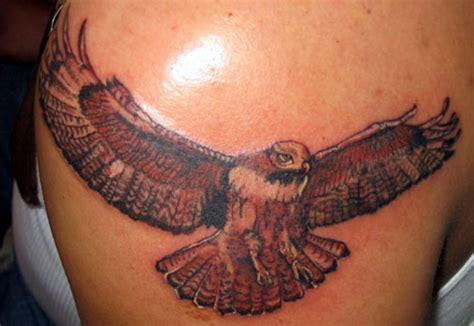 hawk tattoo meaning hawk tattoos designs ideas and meaning tattoos for you