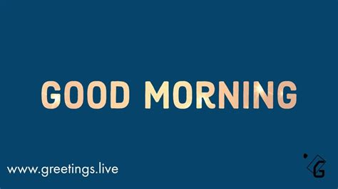 greetingslivefree daily  pictures festival gif images simple good morning gif