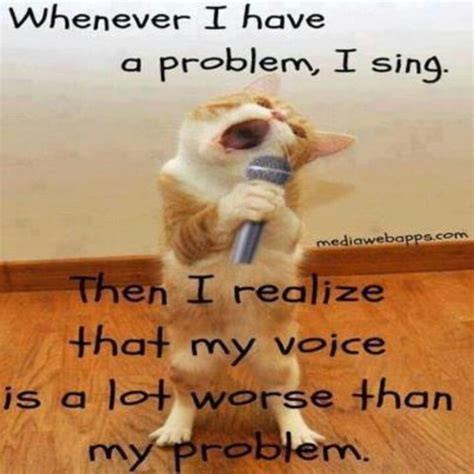Singing Cat Meme - 17 best images about karaoke on pinterest digital