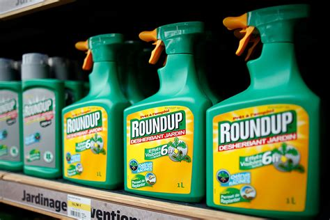 The Roundup by Glyphosate Who Cancer Agency Edited Out Quot Non Carcinogenic