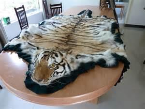 skin rugs for sale le braconnage barbare pour le commerce en chine du vin de