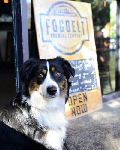 friendly breweries