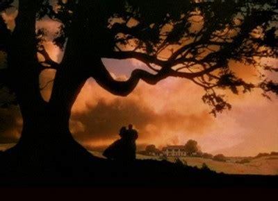 el viento por la lo que trajo el viento what wind brought with tiempo de curar healing time