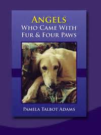 redemption has 4 paws books soul companions animal communication
