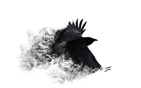 crows wallpaper page    wallpaperwiki