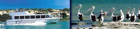 boat shop goolwa coorong boat cruise from goolwa learn to surf surf