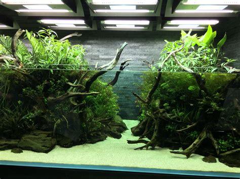aqua design amano contest nature aquarium takashi amano すみだ水族館 sumida aquarium