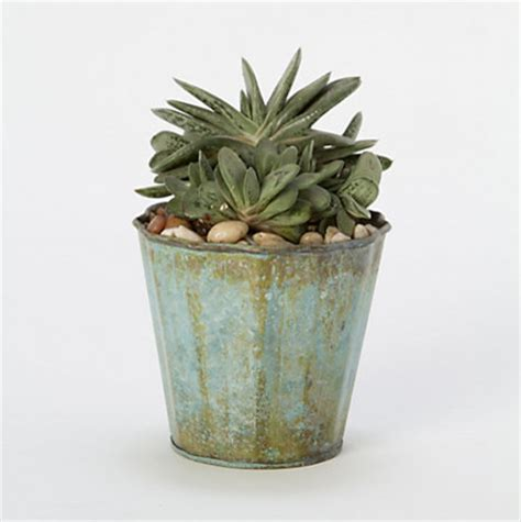 Indoor Planters Pots by Vintage Ridges Pot Traditional Indoor Pots And