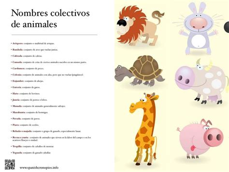 191 que comen los animales vertebrados 191 de que se alimentan sustantivos colectivos de animales palabras pinterest