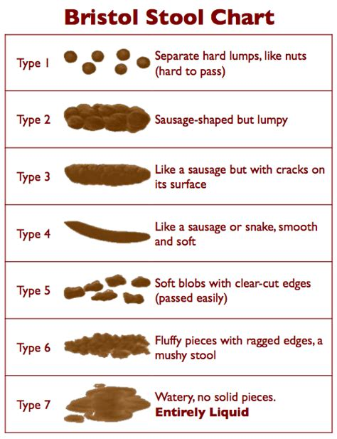 Cause Of Stool by Stool Types And Causes Of Bowel Movements