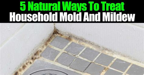 5 ways to treat household mold and mildew
